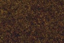 Ar550 bruno mystico